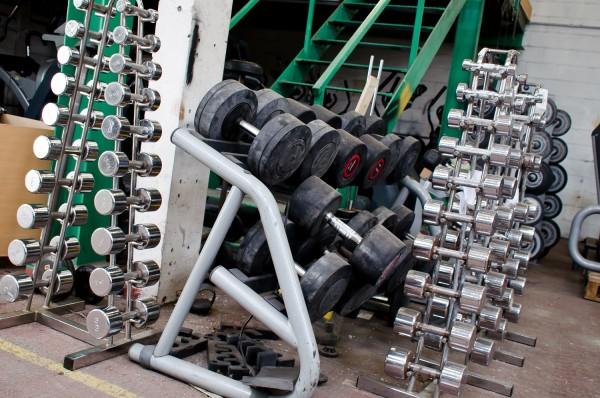 Commercial Gym Equipment Designer